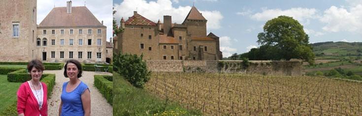 photo Domaine Chateau De Pierreclos Volnay
