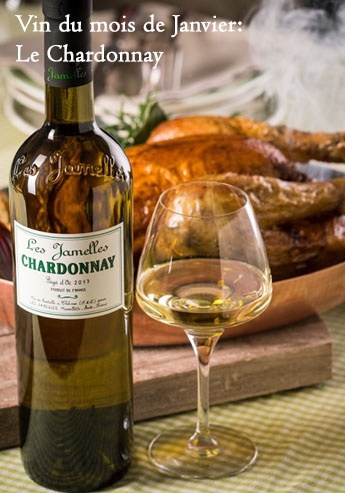 Vin du mois de Janvier 2019: le Chardonnay.